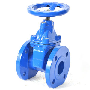 Gate valve zeepconstruction